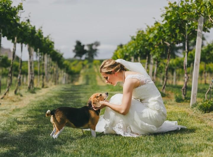 Acquaviva Winery Wedding :: Gwen & Mike